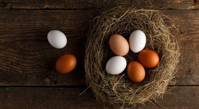 8 astuces merveilleuses avec des œufs a ne pas rater !